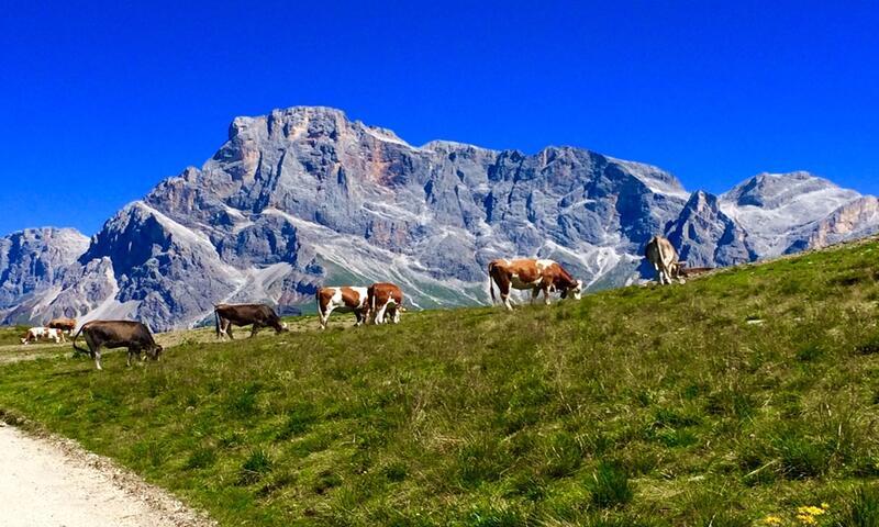 Relax con Omaggio in Trentino
