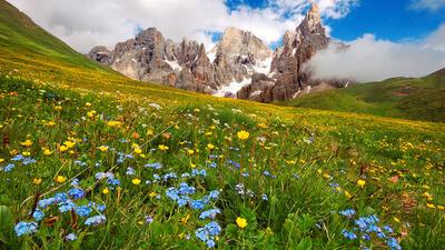 Vacanza Natural Detox nelle Dolomiti: <br>vivi la natura del Trentino