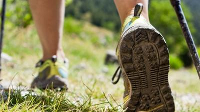 Nordic Walking estivo, l'attività fisica che ti fa scoprire la natura durante la tua vacanza in montagna